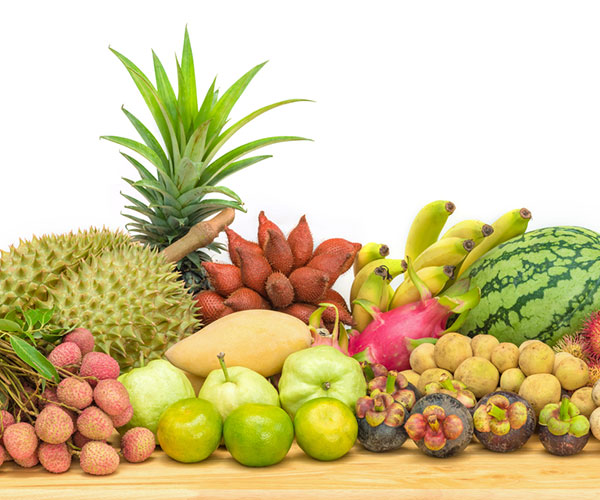 DITP Seeks to Expand Thai Fruit Exports to Southern China