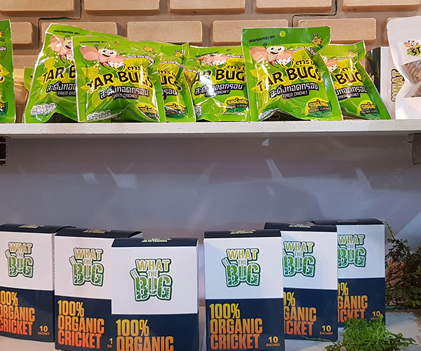 Serving Processed Insects to Global Consumers